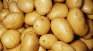 Mucize Kilo Verdiren Patates Diyeti