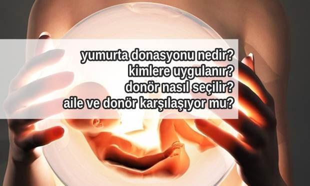 Yumurta Donasyonu Nedir Kimlere Uygulanır?